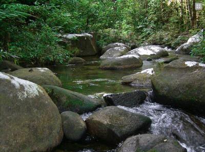 Source: Johor National Parks Corporation