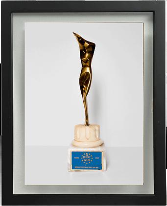VII Europe Award 1993