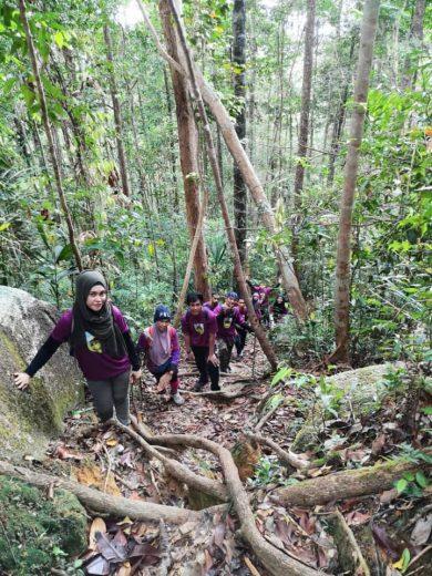 Gunung Tebu3